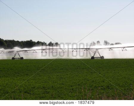 Irrigating America