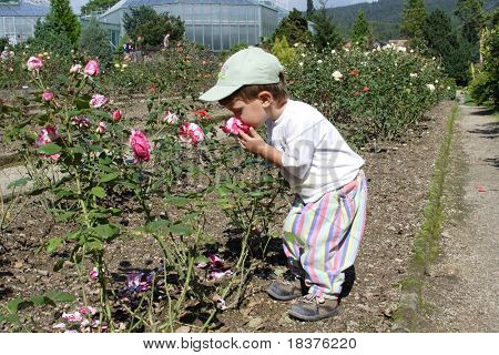 Boy - child little gardener
