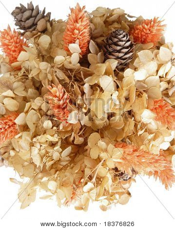 detail of hand made tree of dried flowers and cones