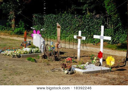 graves of young babies and children on a belgium graveyard