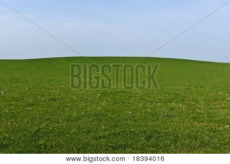 Green Field Blue Sky