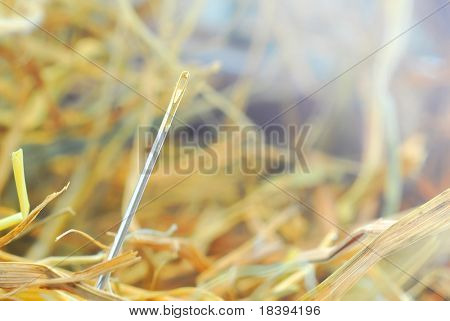 Proverb: needle in a hay stack