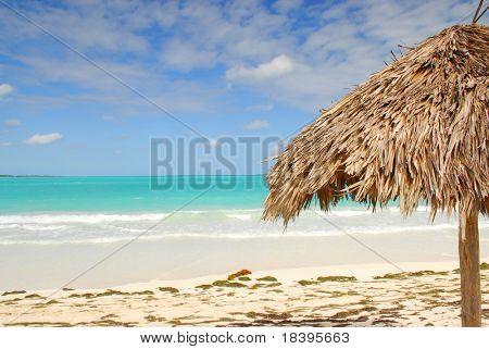 Palm leaf umbrella on tropical beach of Cayo las Brujas on caribbean island Cuba