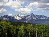picture of rocky-mountains  - The Rocky Mountains of Colorado in the background and Aspen trees in the foreground - JPG