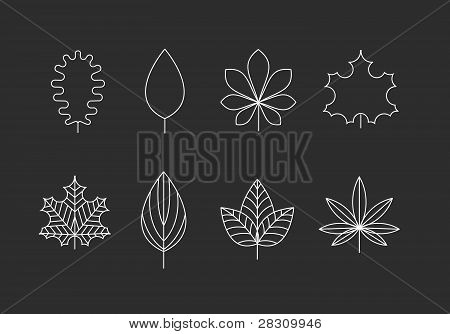 Outlined leaves icons