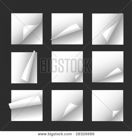 Set of note papers. Vector