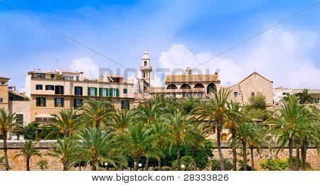 Majorca Cathedral garden with palm trees and Calatrava Barrio