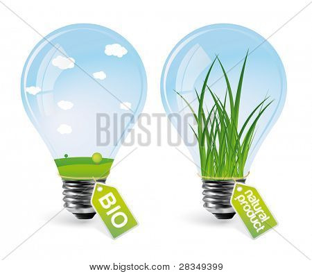 Realistic eco bulbs - set 2