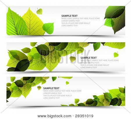 Vektor frisch frühling horizontale Banner mit Blätter und Beispieltext