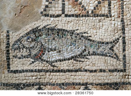 Fish - Icthus, ther ancient Christian symbol