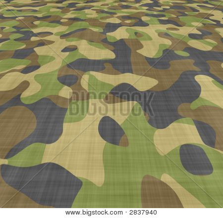 Spread Camouflage
