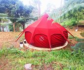 Nature Red Tent In The Forest Shaped Like A Red Cake As A Place To Sleep At Night. We Build Tents To poster