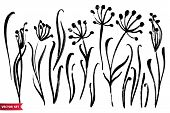 Vector Set Of Ink Drawing Herbs, Flowers, Monochrome Artistic Botanical Illustration, Isolated Flora poster