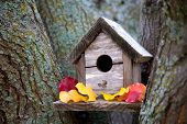 Cozy Birdhouse
