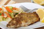 image of catfish  - Closeup of a breaded catfish fillet with a lemon slice - JPG