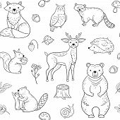 Forest Animals Seamless Pattern. Fox Owl Raccoon Beaver Bear Hedgehog Squirrel Fox. Woodland Baby An poster