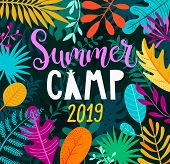 Summer Camp 2019 Banner, Card With Handdrawn Lettering On Jungle Background With Tropical Palm Leave poster