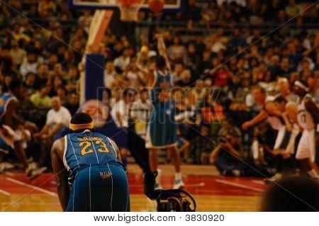 NBA na Europa - Hornets Versus assistentes