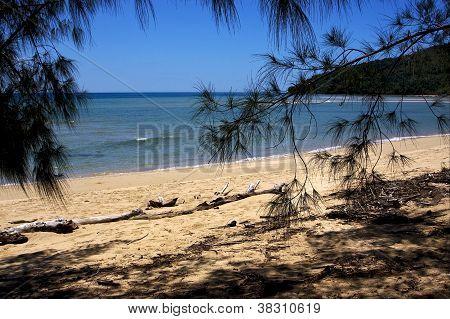 Madagascar's Beach