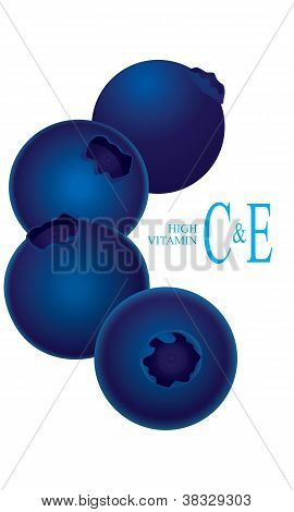 Blueberry high vitamin C & E vector