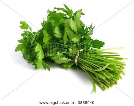 Bouquet Of Parsley