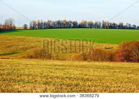 Fields And Meadows In Autumn