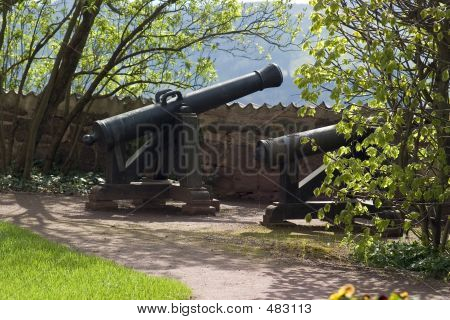 Cannon On The Wartburg