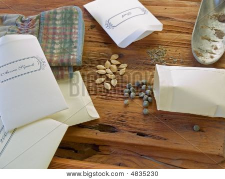 Seeds For Planting