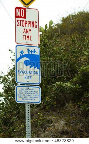 Evacuation Site Tsunami Sign