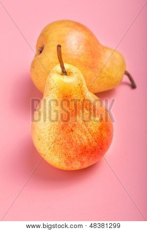 Fresh ripe Bartlett Pears on a pink background.