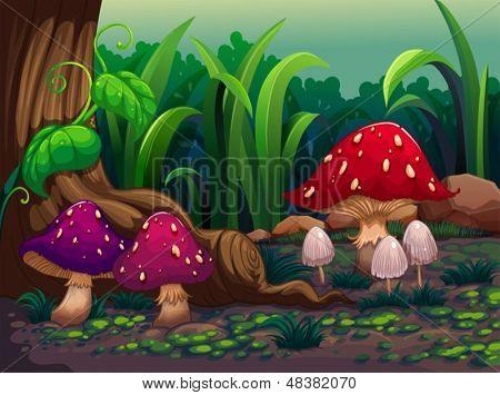 Ilustración de las setas gigantes en el bosque
