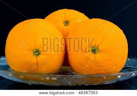 Orange on isolate black background