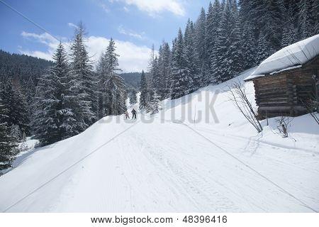free ski run