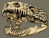 foto of gila monster  - Vector illustration of an isolated gila monster skull profile view - JPG