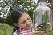 stock photo of stick-bugs  - Happy little girl examining stick insects in jar outdoors - JPG