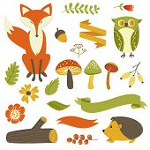 stock photo of cartoon animal  - Autumn forest - JPG