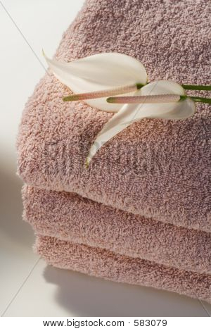 Pink Spa Towels And Flowers