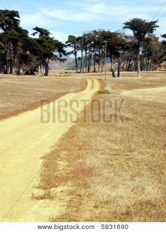 dirt road in dry California