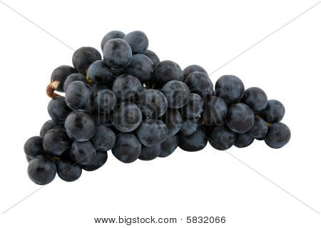 bunch of fresh blue grapes