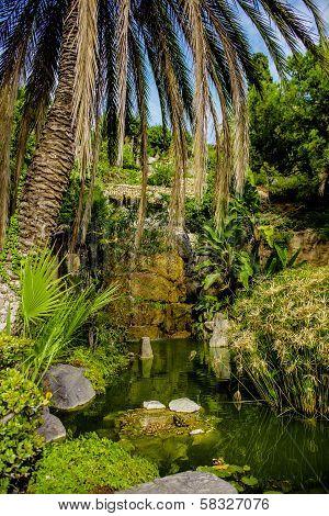 Beautiful Nature. Nerja, Spain