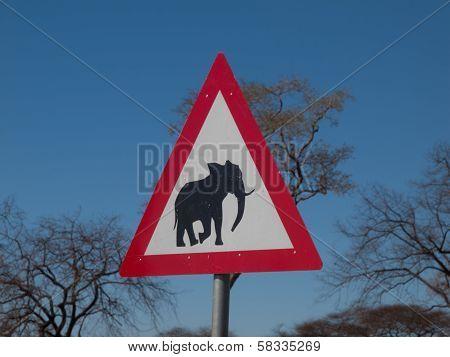 Beware Of Elephants