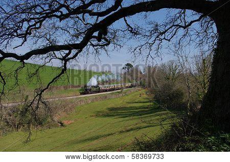 Great Western Steam Locomotive in Devon