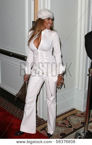 Traci Bingham at the DVD Release of