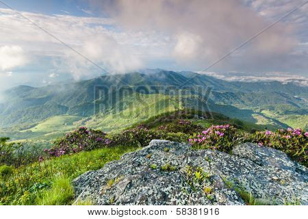 Roan Highlands Mountain Scenic Landscape