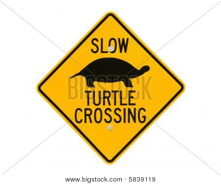 Turtle Road Crossing Sign