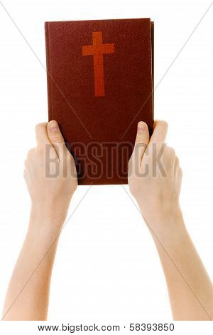Hands Holding A Bible