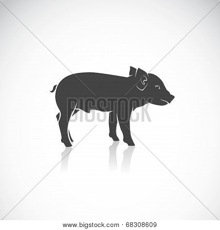 Vector Image Of A Piglet