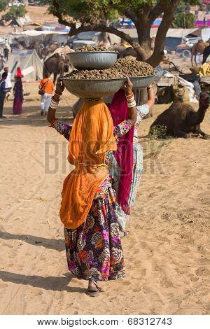 Pushkar Camel Mela In Rajasthan, India.