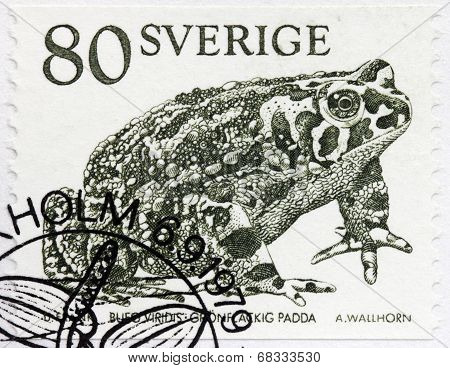 Toad Stamp