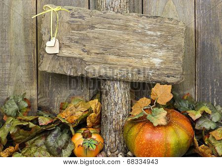 Blank weathered wood sign with autumn border of leaves and pumpkins